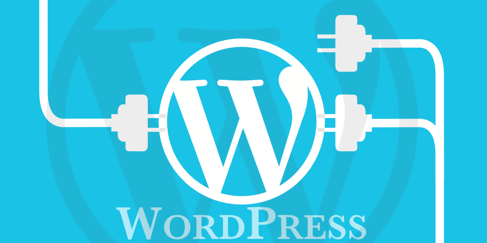 wordpress plugins for web development