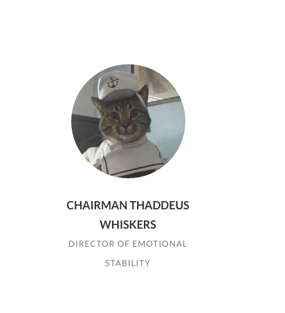 meet Chairman Thaddeus Whiskers